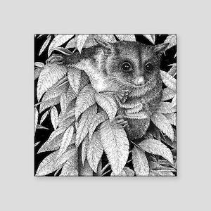 Funny Possum Stickers - CafePress