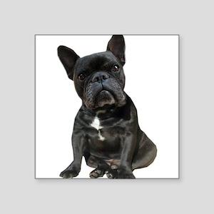"""French Bulldog Puppy Portra Square Sticker 3"""" x 3"""""""