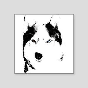 Husky Gifts Bi-Eye Husky Shirts & Gifts Square Sti