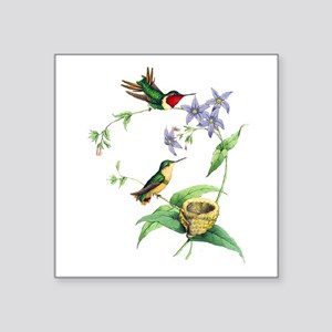 "Hummingbirds Square Sticker 3"" x 3"""