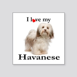 Love My Havanese Sticker