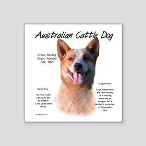 "Cattle Dog (red) Square Sticker 3"" x 3"""