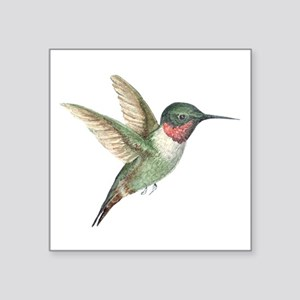 "Hummingbird Square Sticker 3"" x 3"""