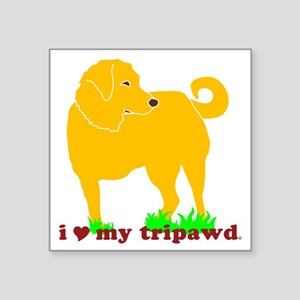 "I Love My Tripawd Golden -  Square Sticker 3"" x 3"""
