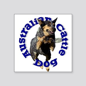 Cattle Dog House Rectangle Sticker