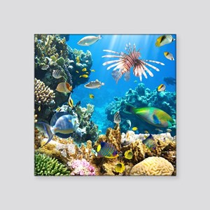 "Sea Life Square Sticker 3"" x 3"""