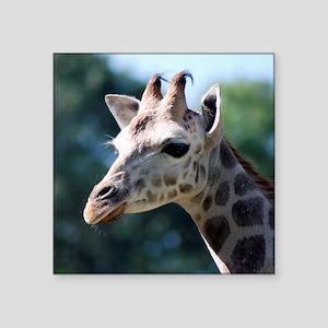 "Giraffe 60 inch curtains Square Sticker 3"" x 3"""