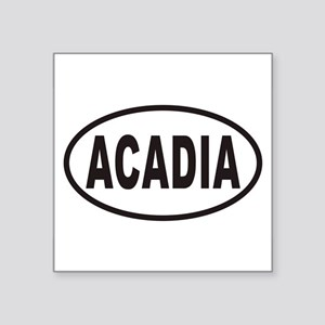 acadiaovals20113x5cp Sticker