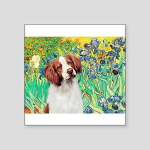 "Irises/Brittany Square Sticker 3"" x 3"""