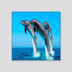 """3 Dolphins Square Sticker 3"""" x 3"""""""