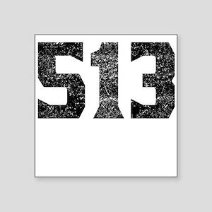 513 Cincinnati Area Code Sticker