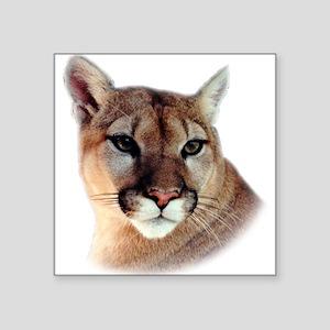 Cindy Men's CougarWear Rectangle Sticker