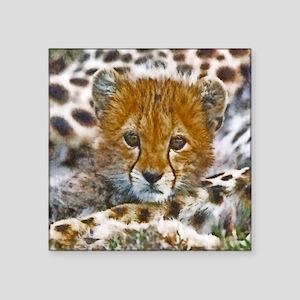"Cheetah Cub Square Sticker 3"" x 3"""