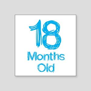 18 Months Old Baby Milestones Sticker