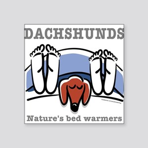 Dachshund bed warmers Square Sticker