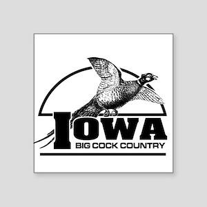 Iowa: Big Cock Country Square Sticker
