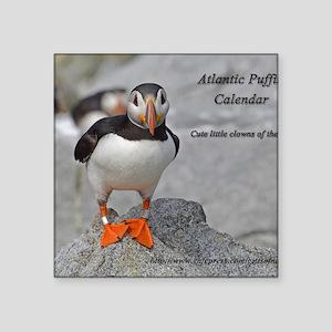 """calendar    dec   cover Square Sticker 3"""" x 3"""""""