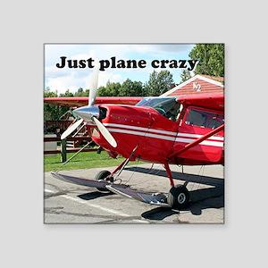 Just plane crazy: skiplane, Alaska Sticker