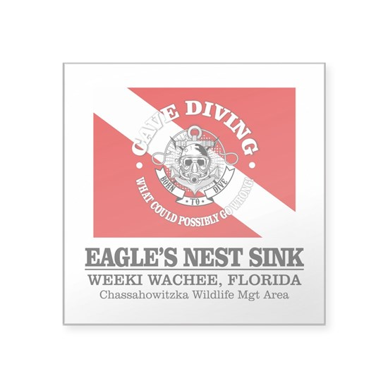 Eagles Nest Sink