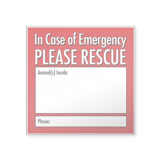 Emergency Animal Rescue