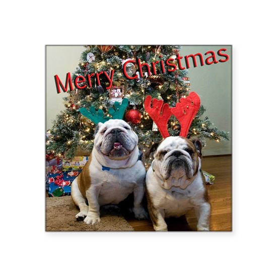 English Bulldog Christmas