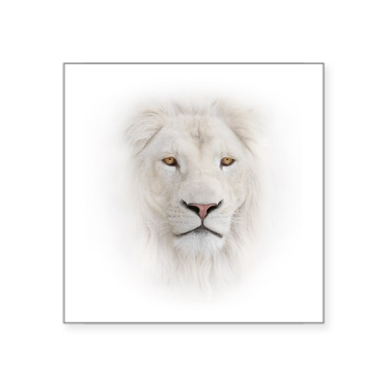 White Lion Head
