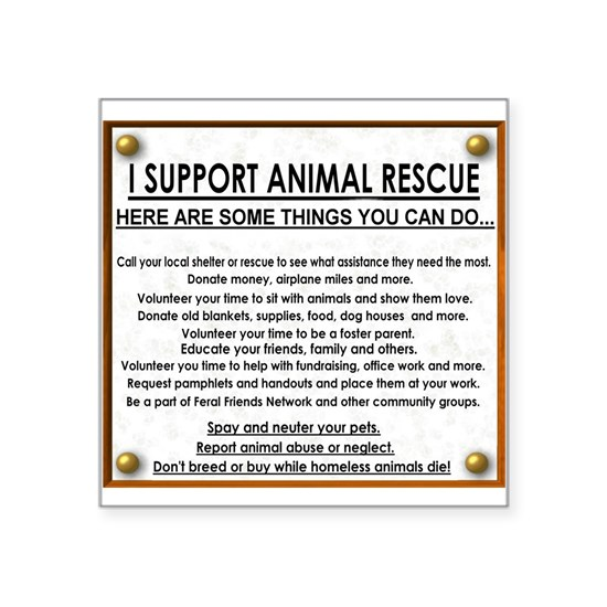 I support animal rescue