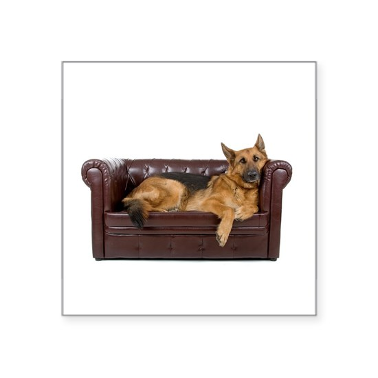 GERMAN SHEPHERD ON COUCH