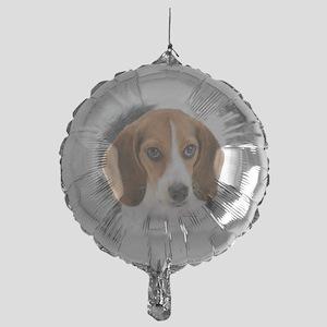 Beagle Close Up Mylar Balloon