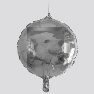 Your Photo in a Silver Frame Balloon