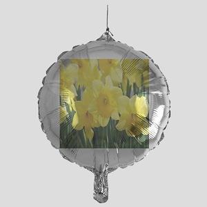 alaska 3 083 - Copy - Copy (3) copy1 Mylar Balloon