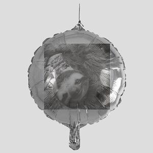 frame print Mylar Balloon