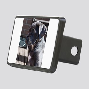 cane corso grey puppy Hitch Cover