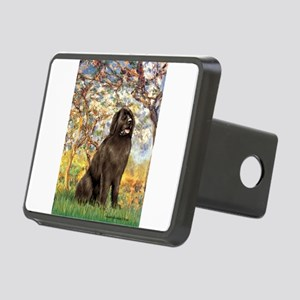SPRING-Newfie-Brown... Rectangular Hitch Cover