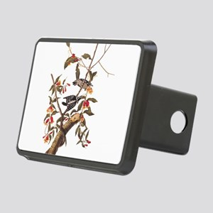 Downy Woodpecker Vintage Audubon Art Hitch Cover