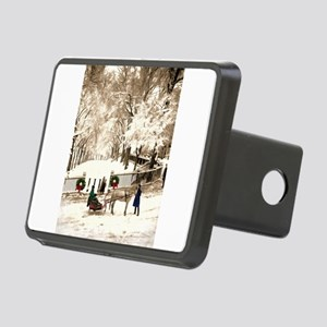 Boston Commons Snow in 187 Rectangular Hitch Cover