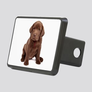 Chocolate Labrador Puppy. Rectangular Hitch Cover