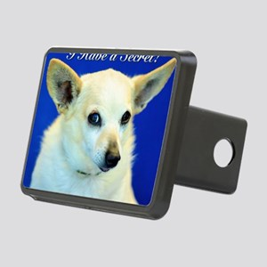 I Have A Secret! Rectangular Hitch Cover