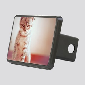 Kitten walking on floor. Rectangular Hitch Cover