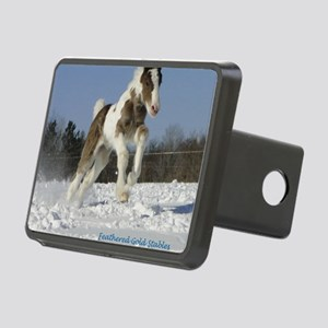 Rosie ready Rectangular Hitch Cover