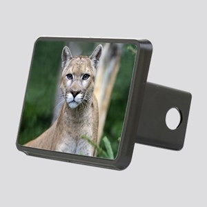 Mountain Lion Rectangular Hitch Cover