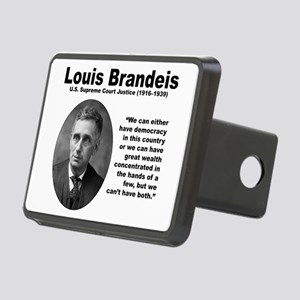 Brandeis Inequality Rectangular Hitch Cover