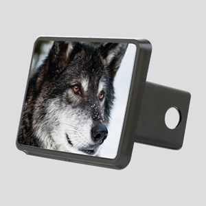 Beautiful Grey Wolf Rectangular Hitch Cover