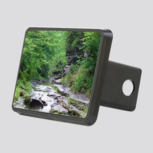 forest river scenery Rectangular Hitch Cover