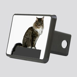 maine coon sitting tabby white Hitch Cover