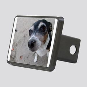 Beach Rat Terrier Hitch Cover