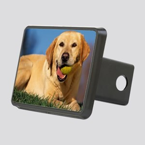 LabTB mousepad Rectangular Hitch Cover