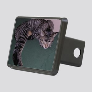 Napping Cat-WR Rectangular Hitch Cover