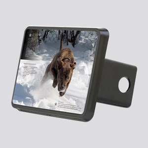 january Rectangular Hitch Cover