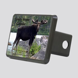 11 Cover Rectangular Hitch Cover